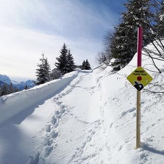 Skitour Rellerli
