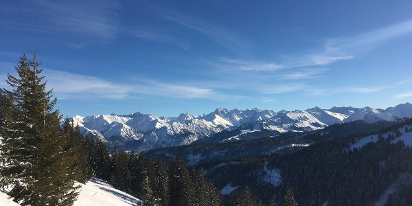 Blick auf die Allgäuer Alpen