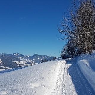 Winterwanderweg in Dresslen nach Müselbach