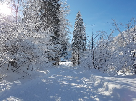 Winterwandern in Mellau