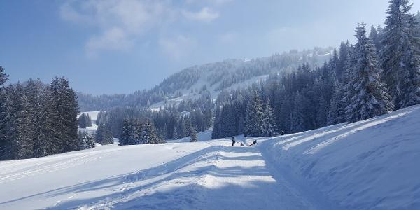 Idyllischer Winterwanderweg am Hochhäderich