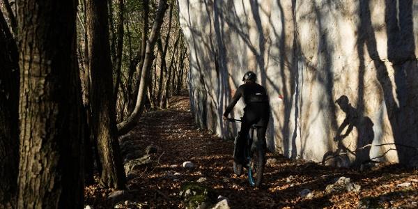 A section of the trail near Bocca di Tovo