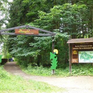 Eingangstor zum Löwenzahn-Entdeckerpfad