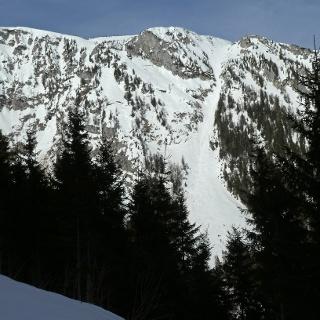 2019-02-09: Blick aus dem Grubbichlwald auf die Schafries