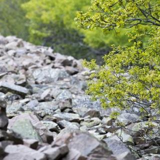 La vecchia Cava dei Gravoni