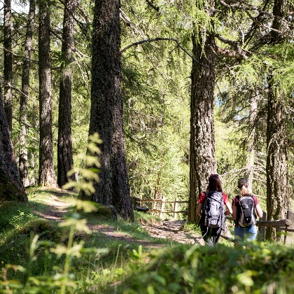 Wandern in Lana