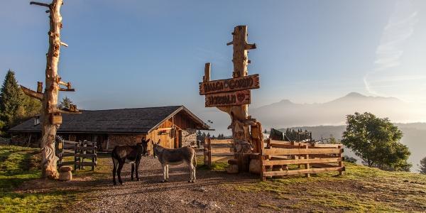 Il rifugio Malga Corno con il suo stupendo panorama
