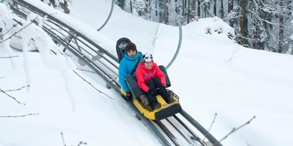 Auch im Winter in voller Fahrt den Berg hinab mit dem Alpine Coaster
