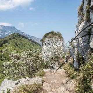Stahlseile sichern den Weg auf den Kleinen Barmstein, im Hintergrund der große Barmstein