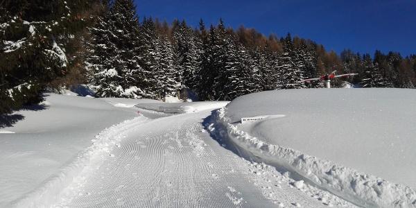 Entlang dem Globi Wanderweg im Winter