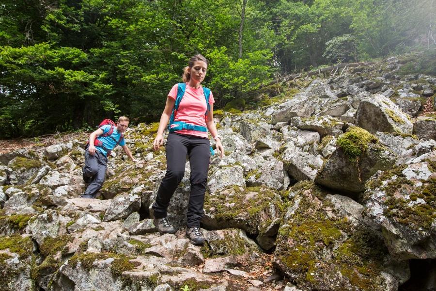 Albsteig Schwarzwald Etappe 3: Wittenschwand - St. Blasien Genießertour