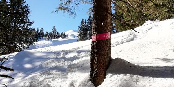Schneeschuh Markierung