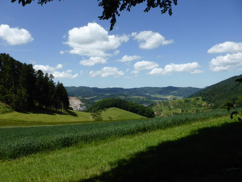 Wolfach - Moosenmättle-Tour