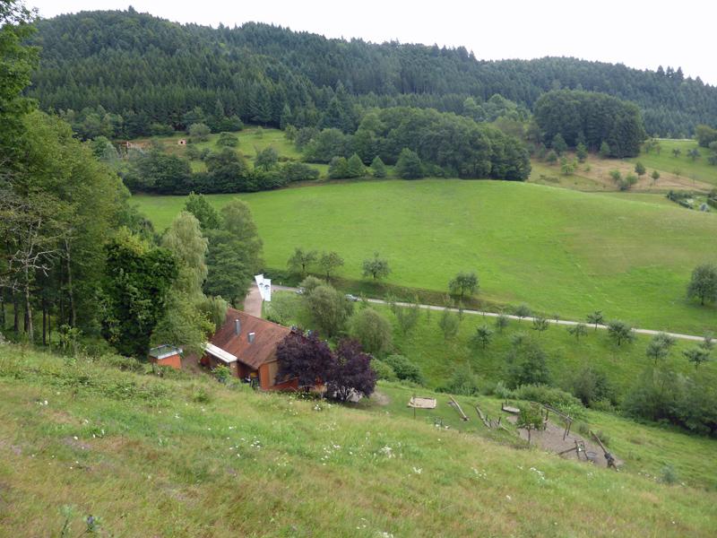 Wolfach - Hohberg-Tour