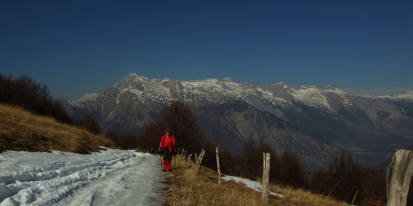 View towards Mt. Kanin from the Božca Mountain pasture