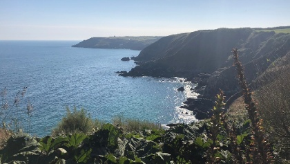 Walk from Coverack to Lizard