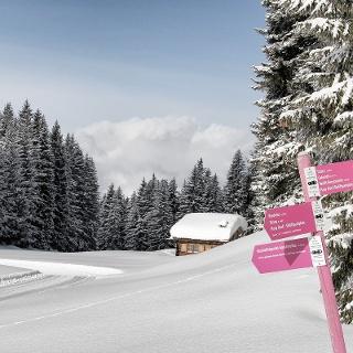 Unterwegs in der Schneeschuh-Arena Prättigau