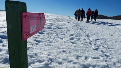 Winterwandern auf dem Weissenstein.