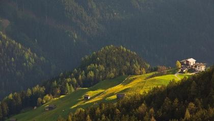 Blick zur Steinerkogl Alm