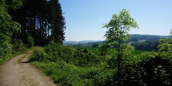 Auf dem TERRA.track Butterberg mit Aussicht auf Hagen a.T.W.