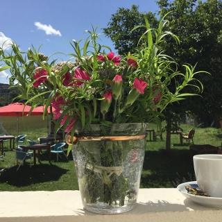Garten im Café