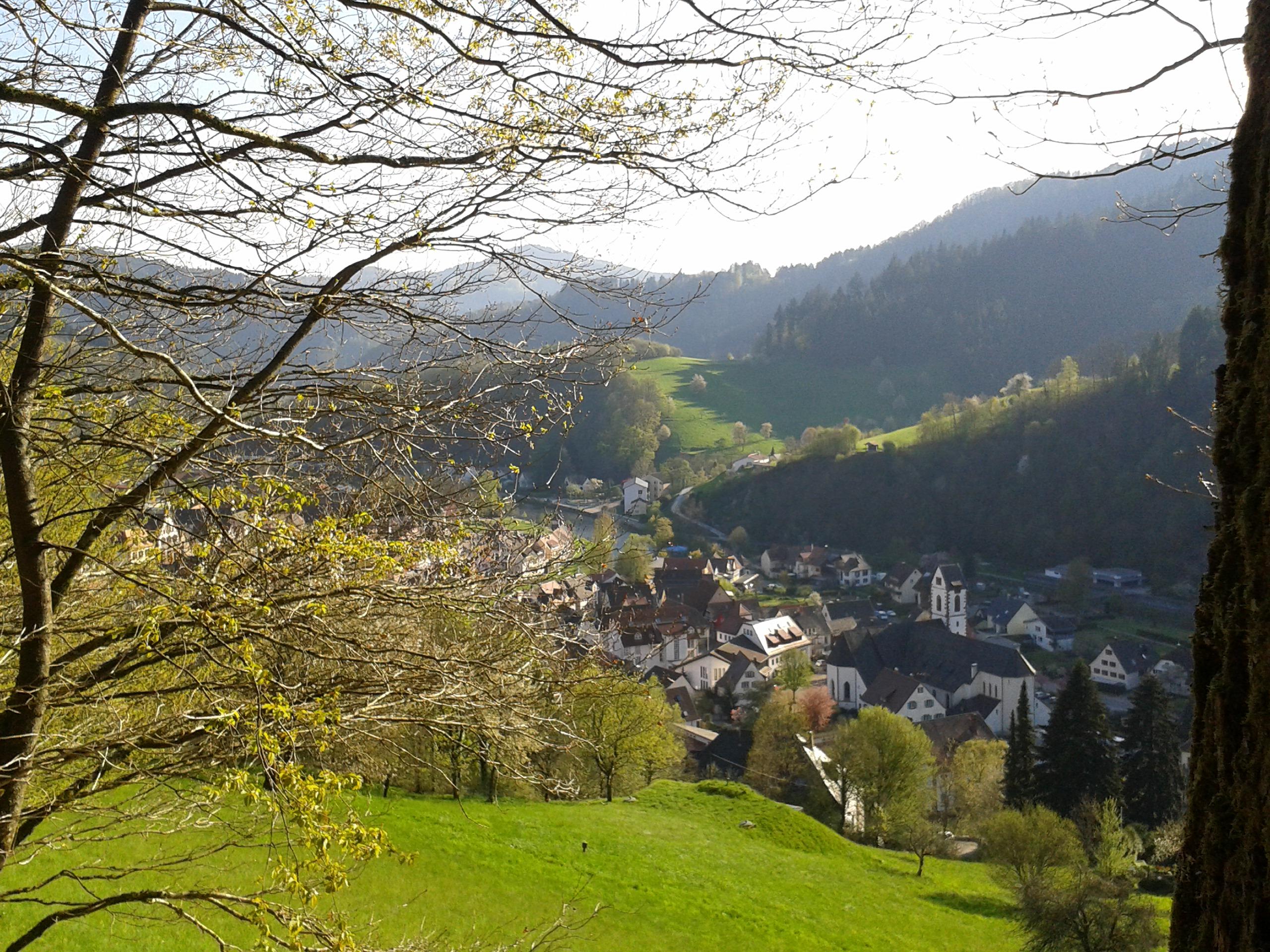 Ausblick auf Wolfach