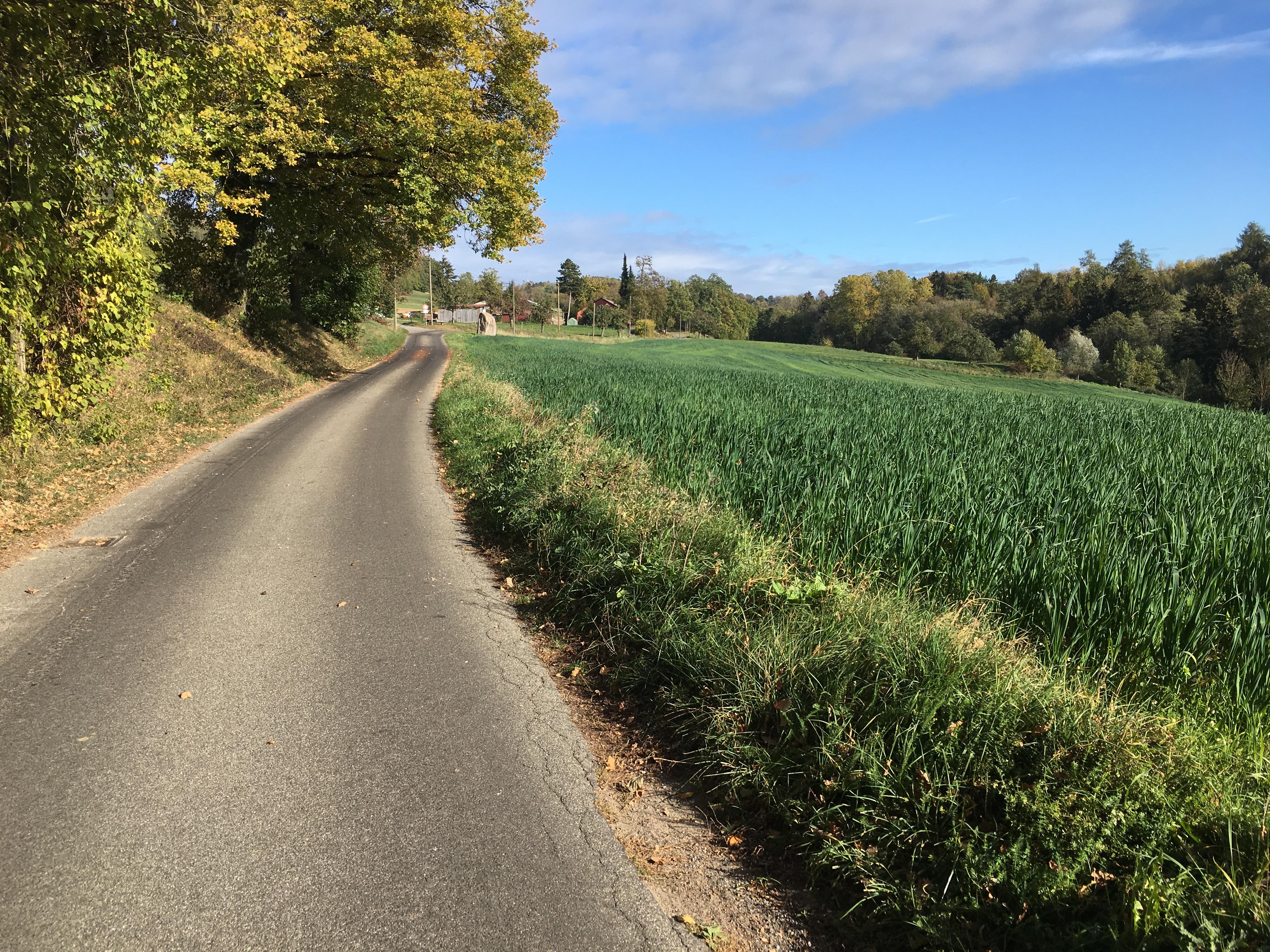 Straße zum Bruderhof