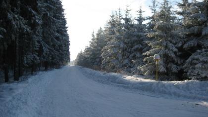 Winterwanderweg zur Hohen Tanne - Großbreitenbach