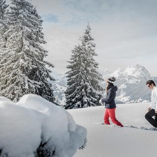 Winterwandern in der Destination Gstaad