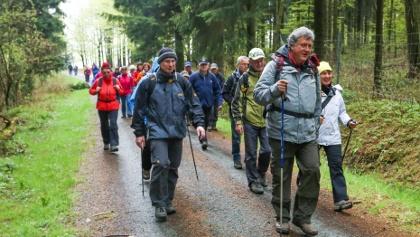 Anwandern Kammweg in Olbernhau