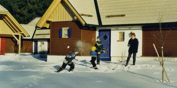 Ferienhäuser Winter