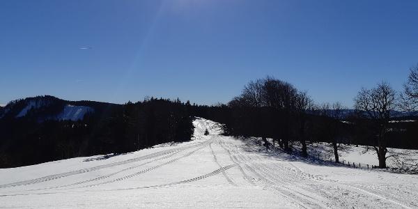 Übergang vom Geißenberg nach Süden zum Mitterkeil
