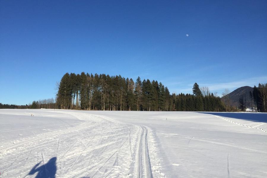 Samerberg - Runde Roßholzen klassisch