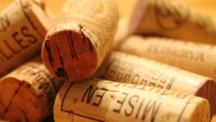 Lernen Sie die regionalen Weine bei einer Weinprobe kennen