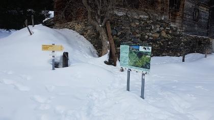 Wolfstall 1200m