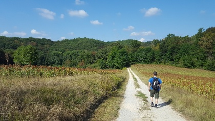 Walk from St Vincent le Paluel to Sarlat
