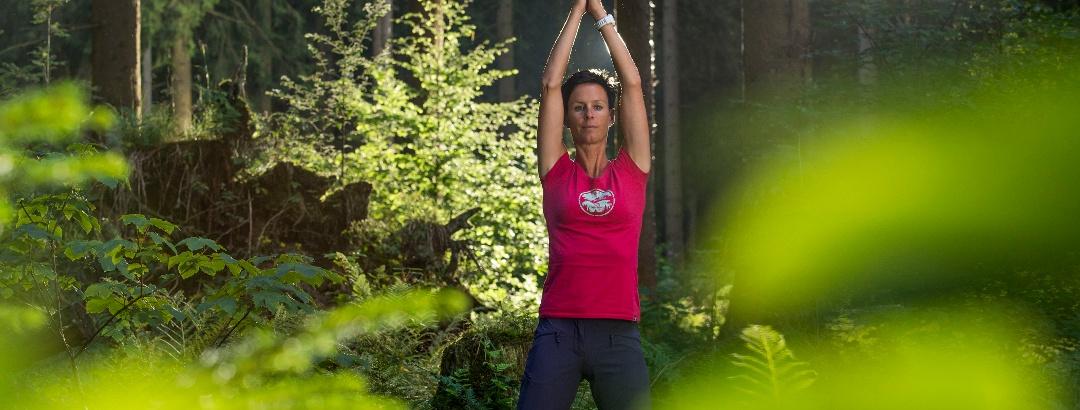 Waldland Hohenroth - Yoga im Wald