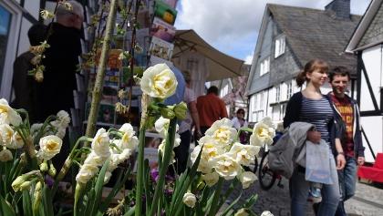 Freudenberger Frühlingsmarkt