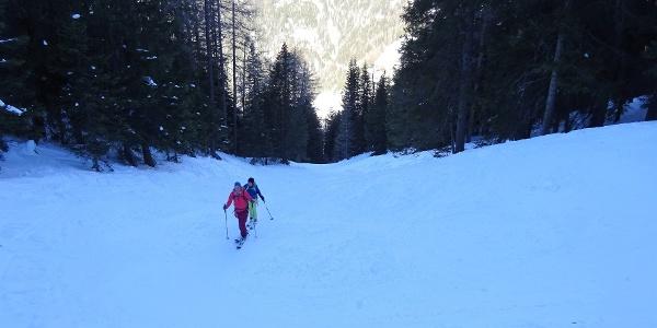 Die Waldschneise ist der perfekte Durchstieg durch den dichten Waldgürtel und häufig in pistenähnlichem Zustand.