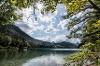 Sommer am Alpsee, Schwangau - @ Autor: Christian Greither Photography - © Quelle: Tourismusverband Ostallgäu e.V.