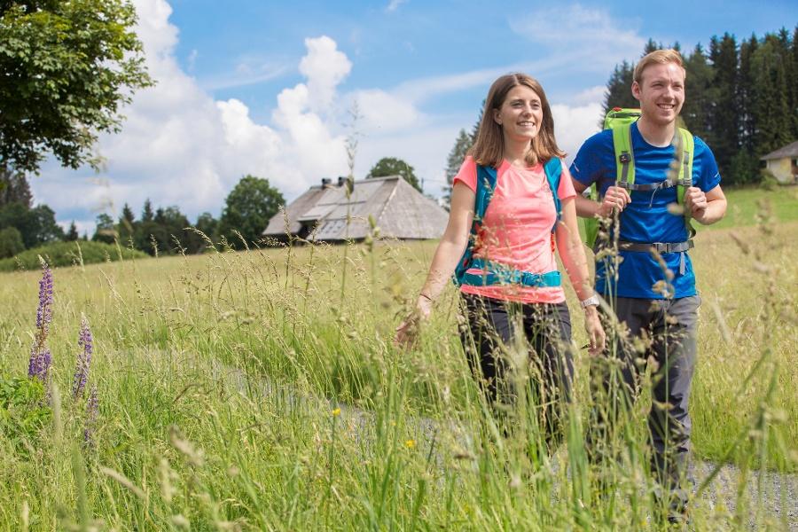 Albsteig Schwarzwald Etappe 4 Tour West: St. Blasien - Bernau Genießer
