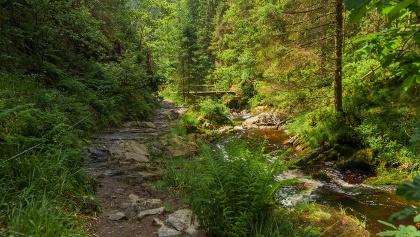 Wandern im Trôs Maret Tal