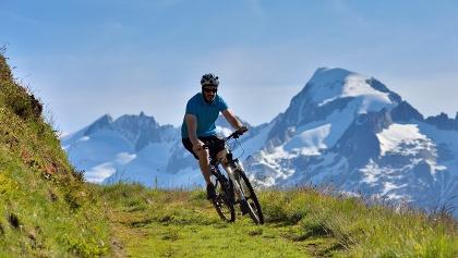 Biker on the Grimsel Bike trail