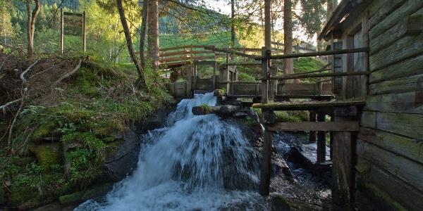 Der Fluder der alten Gföller-Mühle