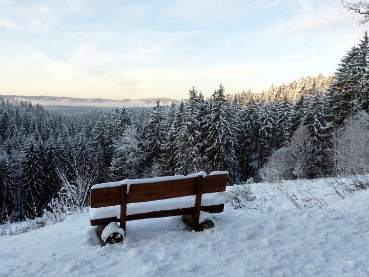 Foto Winterwald bei Sebnitz