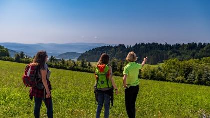 Schöne Aussichten auf das Rheintal und die Schweiz