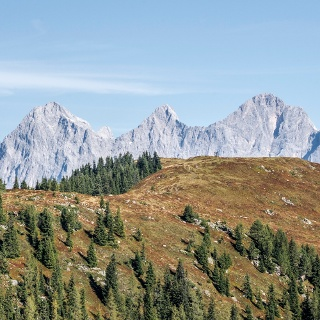 View from Guschen summit to Rossfeld and the Dachstein massif