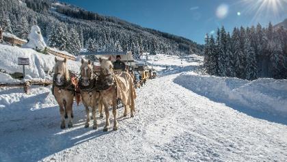 Pferdekutsche an der Schönangeralm