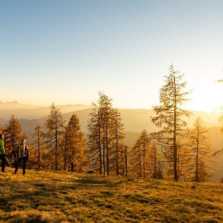 Goldener Herbst am Alpe-Adria-Trail