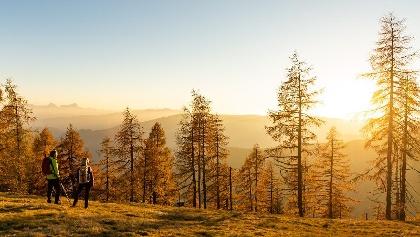 Goldener Herbst am Alpe-Adria-Trail